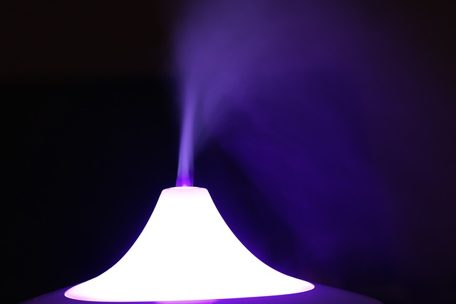 All The Uses Of A Humidifier: The Complete Breakdown
